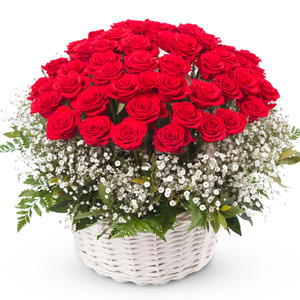 [기념일인기]장미+안개꽃바구니